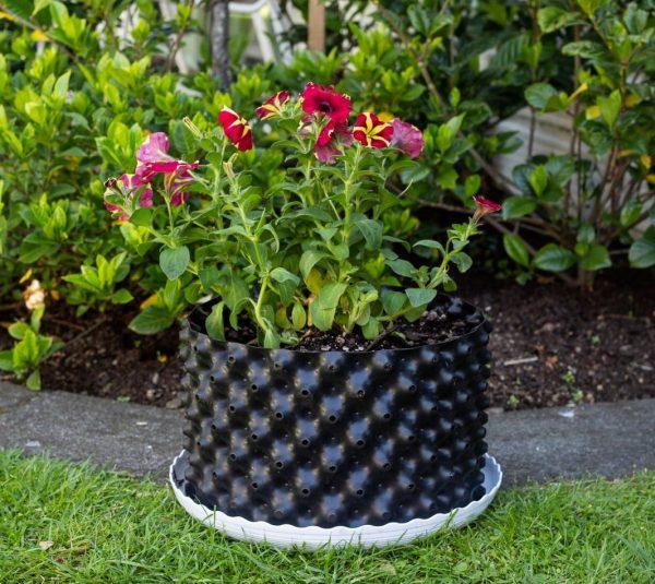 plant pot 12 ltr