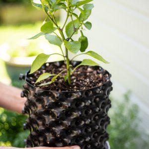 Plant pot NZ 6.5 L black