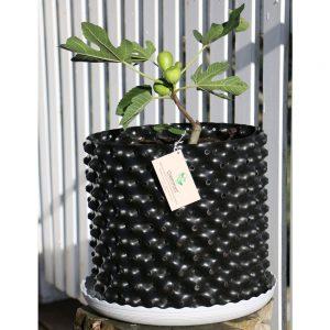 plant pot 19 Ltr White