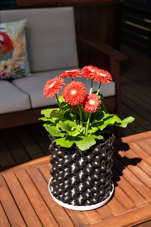 plant pot 6.5 black